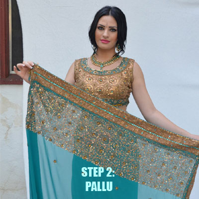 To acquire How to saree wear pallu pleats picture trends